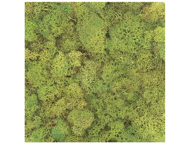 Office Moss Panel Manufacturers in Delhi